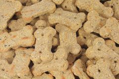 Cute Dog Biscuits Shaped into a Bone Stock Photography