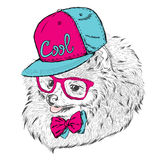 Cute Dog in cap and glasses. Royalty Free Stock Images