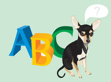 Cute dog and capital letters Royalty Free Stock Photography
