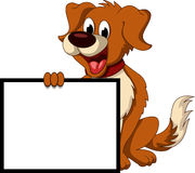 Cute dog cartoon holding blank sign Royalty Free Stock Photo