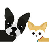 Cute dog cartoon icon Stock Images