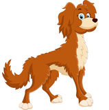 Cute dog cartoon Royalty Free Stock Images