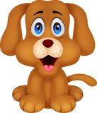 Cute dog cartoon Stock Images