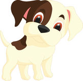 Cute dog cartoon Stock Photo