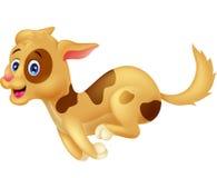 Cute dog cartoon running Stock Photography