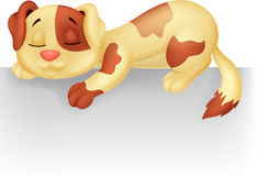 Cute dog cartoon sleeping Stock Photo