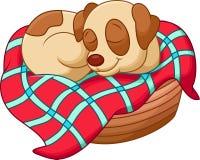 Cute dog cartoon sleeping Stock Photos