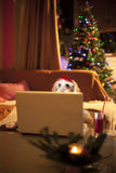 Cute dog chatting. On notebook with christmas tree on background royalty free stock photography