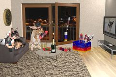 Cute dog chihuahua watch tv and cute bunny play with fireworks for new year. Background Stock Photos