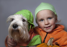 Cute dog and child wearing a Halloween pumpkin Stock Photo