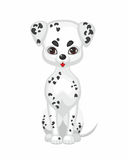 Cute dog dalmatian. Dog dalmatian. Vector image of a cute purebred dogs in cartoon style Stock Photos