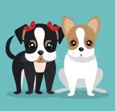 Cute dog design Royalty Free Stock Photo