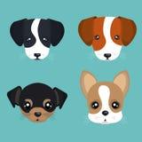 Cute dog design Stock Photo