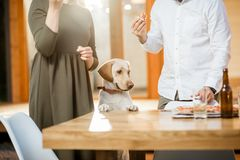 Dog eating with couple outdoors royalty free stock photos