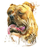 Cute Dog. Dog T-shirt graphics. watercolor Dog illustration. Aggressive dog breed.