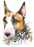 Cute Dog. Dog T-shirt graphics. watercolor Dog illustration. Aggressive dog breed. Royalty Free Stock Image