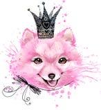 Cute Dog. Dog T-shirt graphics. Royalty Free Stock Photo