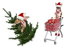 Cute dog drive cart with christmas balls with cute bunny and christmas tree. Isolated Royalty Free Stock Images
