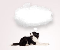 Cute dog with empty cloud bubble Stock Photos