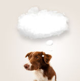Cute dog with empty cloud bubble Royalty Free Stock Images