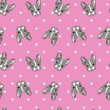 Cute Dog Face Cartoon Seamless Repeat on pink polka dot background. Cute Dog Face Cartoon Seamless Repeat Pattern - Boston Terrier, French Bulldog - Turquoise Stock Photography