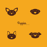 Cute dog Faces Royalty Free Stock Image