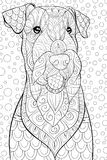 Adult coloring book,page a cute dog on the abstract background for relaxing.Zen art style illustration. A cute dog with floral ornaments on the abstract vector illustration