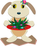 Cute Dog with Flowers on a Plate Royalty Free Stock Photography