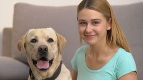 Cute dog and happy young woman looking in camera, pet companionship, best friend. Stock footage stock video footage