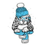 Cute dog in a hat, scarf and glasses. Purebred puppy. Spaniel in winter clothes. Vector illustration. Cute dog in a hat, scarf and glasses. Purebred puppy Stock Photos