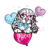 Cute dog with hearts, glasses and a tie. Vector illustration for a postcard or a poster, print for clothes. Valentine`s Day, love and friendship. Purebred Stock Photos