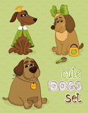 Cute dog. Hipster set of cute funny dogs vector illustration Royalty Free Stock Photos