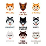 Cute dog icons, set II Royalty Free Stock Photography