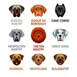 Cute dog icons, set III Royalty Free Stock Image