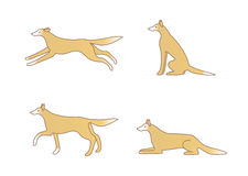 Cute dog image, variations of movement Stock Images
