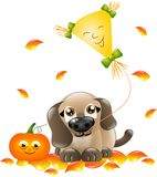 Cute dog with kite Royalty Free Stock Image