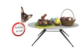 Cute dog looking to the easter eggs but is forbidden for dogs Royalty Free Stock Photography