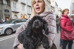 Cute dog outside Trussardi fashion show building for Milan Women Royalty Free Stock Photo