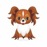Cute dog Papillon Stock Image