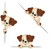 Cute dog peeking from behind in various positions. Scalable vectorial image representing a cute dog peeking from behind in various positions, isolated on white Royalty Free Stock Photos