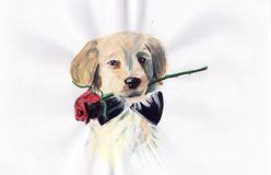Cute dog. Cute puppy with flower hand draw Royalty Free Stock Image