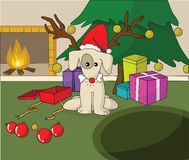 Cute dog in Santa Xmas cap. Opening gift near fireplace Stock Photos