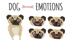 Cute dog. Set of emotions Royalty Free Stock Image