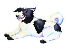 Cute dog sitting smiling watercolor painting art hand drawing. Illustration Stock Photos
