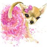 Cute dog T-shirt graphics. mini dog illustration with Stock Photography