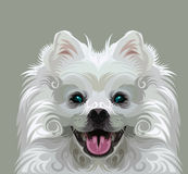 Cute dog vector royalty free illustration