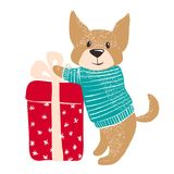Cute dog in warm winter sweater with gift. Royalty Free Stock Photo