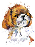 Cute dog watercolor illustration.