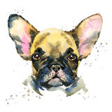 Cute dog. Watercolor puppy dog illustration. Stock Images