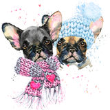 Cute dog. Watercolor puppy dog illustration. Royalty Free Stock Photography